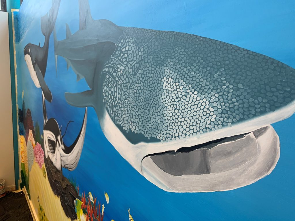 Hand-painted Ningaloo Mural shines in our Backpackers!