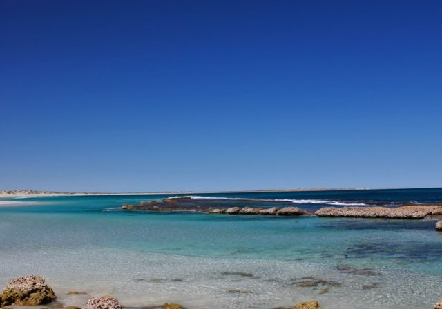 generica-ningaloo-coral-bay-post-headers 11